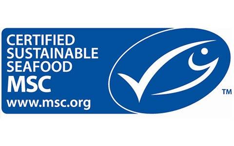 certificate_msc