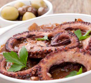 ośmiornica octopus